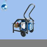 세차 및 원예용 도구 및 물 청소 기계 150bar