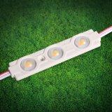 Módulo del fabricante LED de China del alto brillo para hacer publicidad de muestras