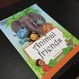 Livres anglais d'enfants, livres de coloration de gosse, impression bon marché de livre pour enfant
