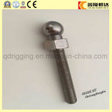 Bulloni dell'acciaio inossidabile della testa 304 dello zoccolo del tasto del fornitore