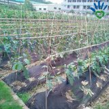 3% UV 에이전트 잡초 방제 직물 PP 비 길쌈된 직물