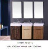 Het Kabinet van de badkamers met Ceramisch Bassin met Spiegel