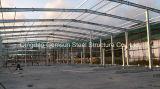 Entrepôt préfabriqué de structure métallique de hangar (SL-0049)