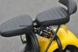 Fabrik Citycoco entfernbare Batterie-Vorderseite-Rückseiten-hydraulischer Scheibenbremse-Förderung-Produkt E-Roller