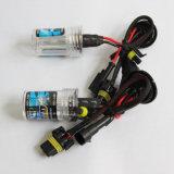 12V 35W H1/H3/H7/H8/H9/H11/9005/9006/880/881 HID Xenon Bulbs mit Free Shipping nach USA Europa usw.