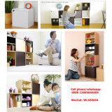 家具の工場OEM多機能の新しいデザインDIY家具の収納キャビネット