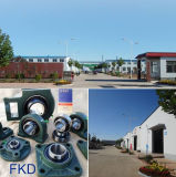 Kissen-Block-Lager-Geräte (UCFL306) Fkd/Hhb
