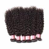Het vrije Weefsel van het Menselijke Haar van Jerry Curl Remy van de Rang van de Steekproef Natuurlijke Zwarte 8A Braziliaanse