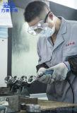 Pièces perdues de pot d'échappement de bâti de cire avec la fabrication de Chinois