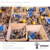 La vente en gros de Hongdao crante des huîtres Boxes_D en bois de moules