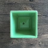Handgemachter grüne Farben-keramischer Blumen-Potenziometer für Succulent