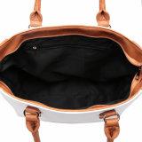 대조 색깔 큰 우연한 운반물 여자 핸드백 (MBNO041027)