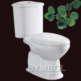 Туалет (SS-TT2616)