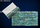AAA Grade New Zealand Abalone Flexible Shell Sheet