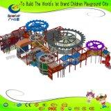 販売のための新しいデザイン子供の屋内運動場
