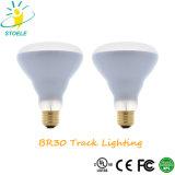 Br30/PAR40 반사체 전구 LED 궤도 점화 플러드 빛
