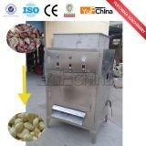 판매를 위한 기계를 분리하는 마늘