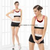 Ternos Running da ioga da Rápido-Secagem da alta qualidade da roupa das mulheres