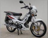 درّاجة ناريّة شعبيّة, [فورزا], [إكسمس], [هيغقوليتي], رخيصة