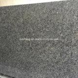 Floor Tile Slab를 위한 얼음 Blue Granite