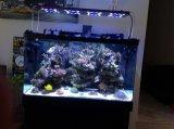 """Chaud vendant 16 """" 24 '' 32 """" 48 """" lumières d'aquarium de récif coralien de DEL"""