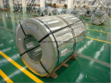 Heißes DIP Galvanized Steel Coil mit Regular Spangle