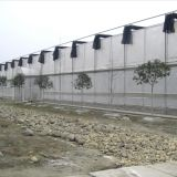 De Serre van de multi-Spanwijdte van de Landbouw van de plastic Film voor Verkoop met de Directe Verkoop van de Fabriek