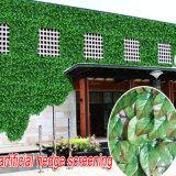 산울타리 플라스틱 정원 회양목 담쟁이 잎 담 인공적인 산울타리