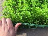 인공적인 잔디의 인공적인 플랜트 그리고 꽃 30X30cm 구 Jy902122126