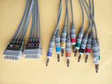 Shanghai-Kohden 10 de Kabel van de Boomstam EKG/ECG