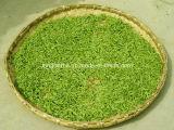 Extracto natural de Sinensis del extracto/de la camelia del té verde del 100% de Kingherbs