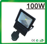 De Schijnwerper LED van LED Flood Light RGB (Remote Controller 20W)