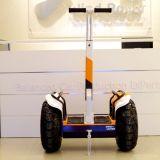Autoped van de Blokkenwagen van de Koning van het Saldo van China de Nieuwste Zelf Elektrische