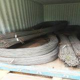 Tondo per cemento armato rinforzante d'acciaio di qualità principale di ASTM utilizzato nella costruzione