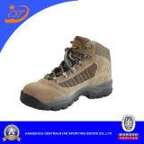 Heißes Form-bestes Kamel-athletische kletternde Schuhe (CA-09)