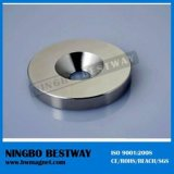 The Furniture를 위한 강한 Neodymium Magnet