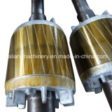 Motor elétrico trifásico de eficiência elevada da C.A.