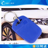 Heiße Verkaufs-freies Beispielspäteste ABS NFC Form Keychain