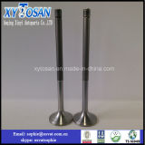 Highquality all'ingrosso Factory Price Engine Valves per Weichai 250