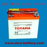 Batterie automatiche di inizio di avviamento a batteria dell'automobile della batteria marina di inizio