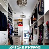 Boa qualidade do Wardrobe europeu do armário Walk-in do estilo (AIS-W167)