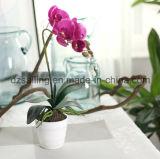Flor artificial de la orquídea única del crisol (SF15479)
