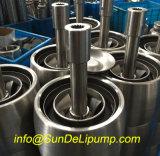 """(6SP60/4-9.2kw) da """" bomba de água submergível do poço profundo do aço inoxidável polegada 6 com Ce"""