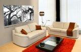 Peinture classique de Non-Bâti de PVC