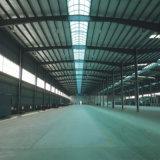Almacén logístico dirigido \ almacén de acero