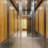 Ascenseur résidentiel extérieur d'intérieur en verre de passager de levage