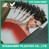 PVC flexible Free Foam Board/Sheet de Competitive pour Advertizing