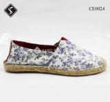 方法女性のキャンバスの余暇の靴