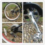 La pédale 2015 de Fashoin a aidé le vélo électrique de croiseur de plage