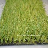L'erba sintetica di calcio mette in mostra il tappeto erboso artificiale (st)